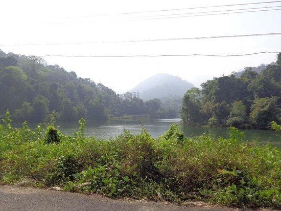 Gavi Forest : Way to Gavi