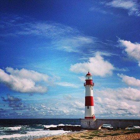 Mar Brasil Hotel: Paisagem