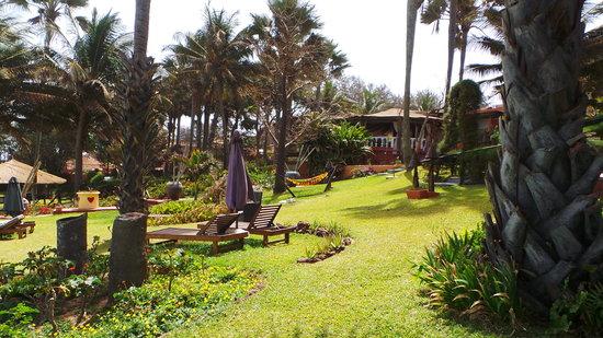 Ngala Lodge: The gardens
