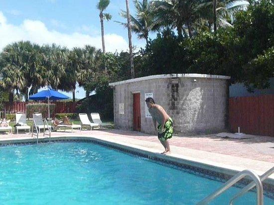 Seagull Hotel Miami South Beach: Pileta del hotel