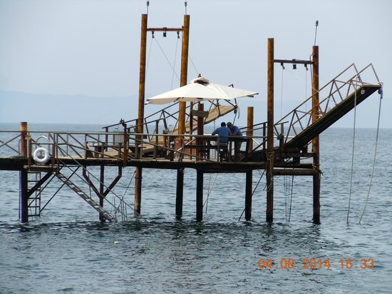 Vallarta Adventures - Las Caletas Beach Hideaway : The dock with the steps on the left to go into the water!