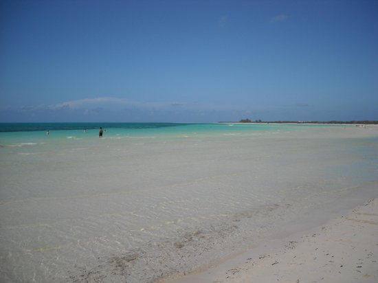 Hotel Playa Coco: The wonderful beach, shallow ,warm, perfect.