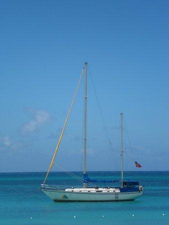Miramar Sailing: The boat while docked at Turner beach