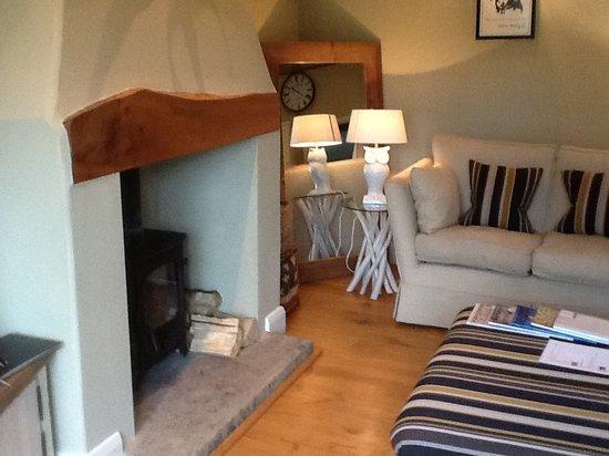 North Dockenbush B&B: Log burner in living area...