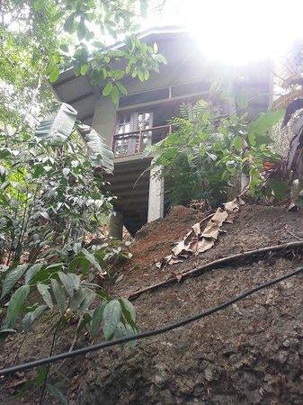 Luz en el Cielo Eco-B&B/Hostel: My villa!