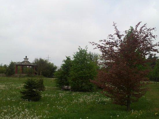 Artrium am Park: anliegender Park 2