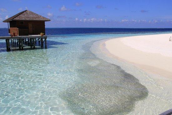Vilamendhoo Island Resort & Spa : Plage