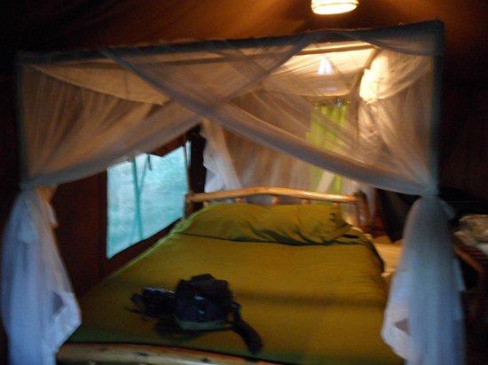 Kibo Safari Camp: tenda