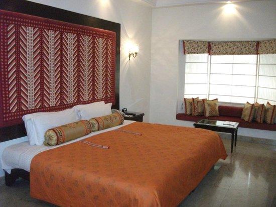 The Lalit Laxmi Vilas Palace Udaipur : camera