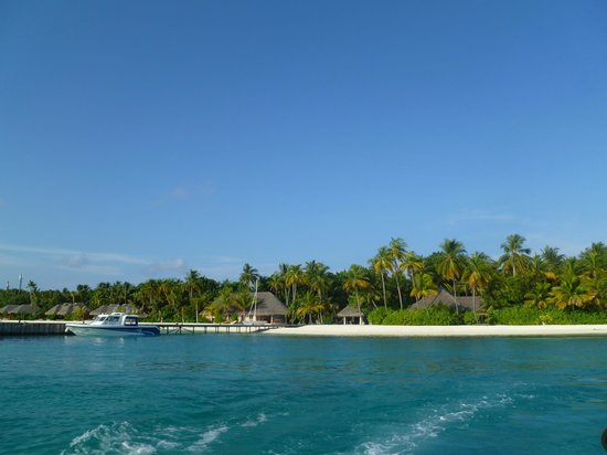 Veligandu Island Resort & Spa: View of the island from boat
