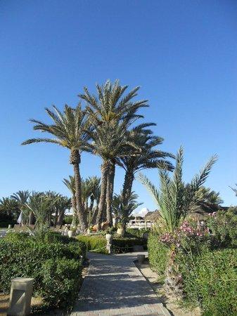 Seabel Rym Beach : le jardin pour allez à la mer