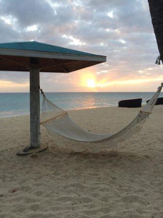 Jacqui O's BeachHouse : Sunset