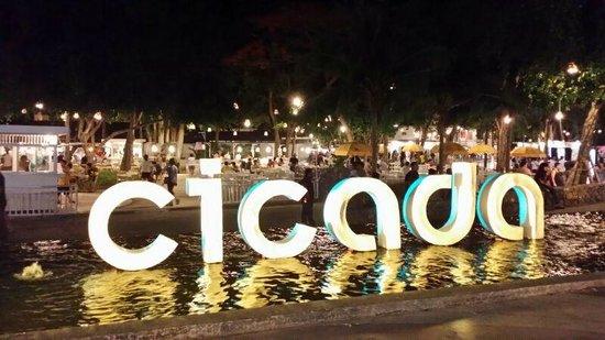 Cicada Market: Photo Op