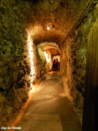 Fontaines Petrifiantes de Saint-Nectaire: Entrée souterraine
