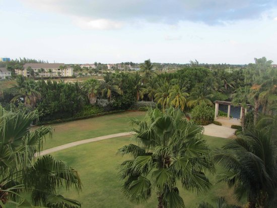 The Ritz-Carlton, Grand Cayman: Garden view from room #550