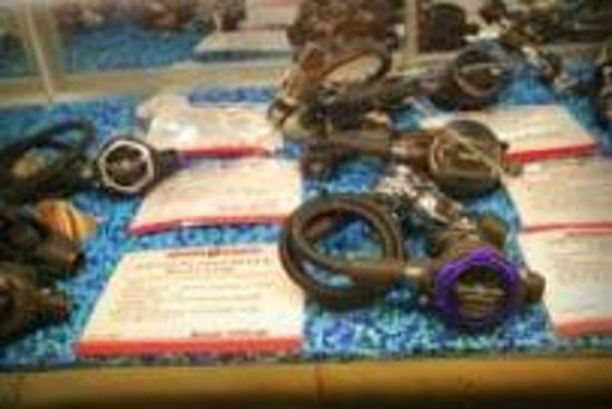 Divers Direct Fort Lauderdale: Wide selection of dive equipment at great prices.