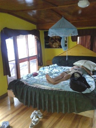 King Fern Cottage : Our attic room with comfy big bed!