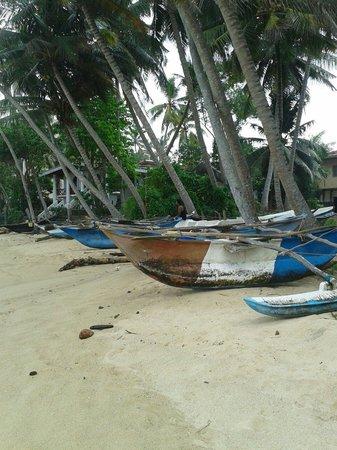 Praneeth Guest House, Mirissa: Beach out front