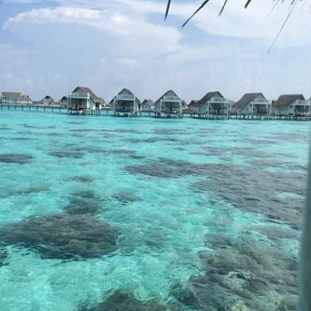 Centara Grand Island Resort & Spa Maldives : view from room