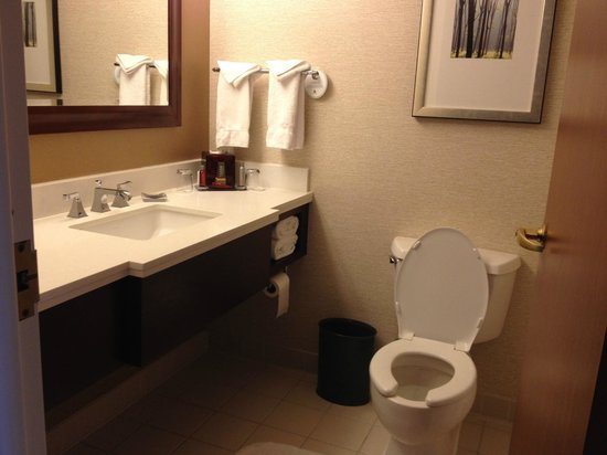 West Des Moines Marriott: Clean, modern baths