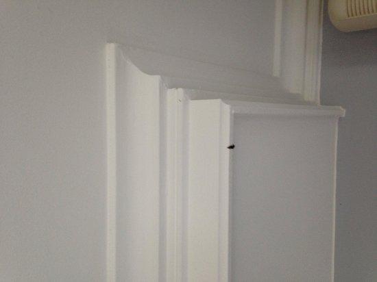 Le Domaine du Mirage: Araignée au plafond sans humour!