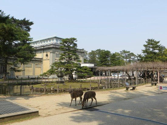 Nara National Museum: Old building