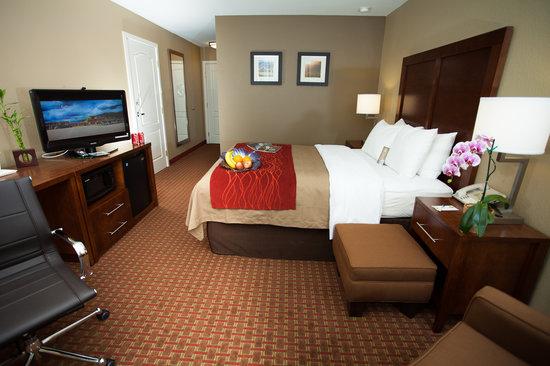 Comfort Inn & Suites Carbondale: ADA Room