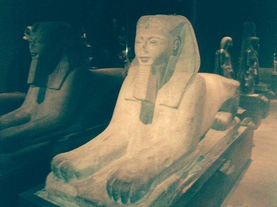 Musée égyptologique de Turin : Sfinge.