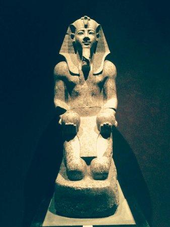 Musée égyptologique de Turin : Faraone, uno dei tanti.