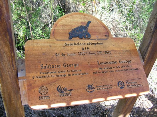 Charles Darwin Research Station : Lonesome George