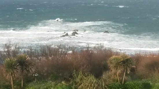YHA Lizard Point : Room with a view