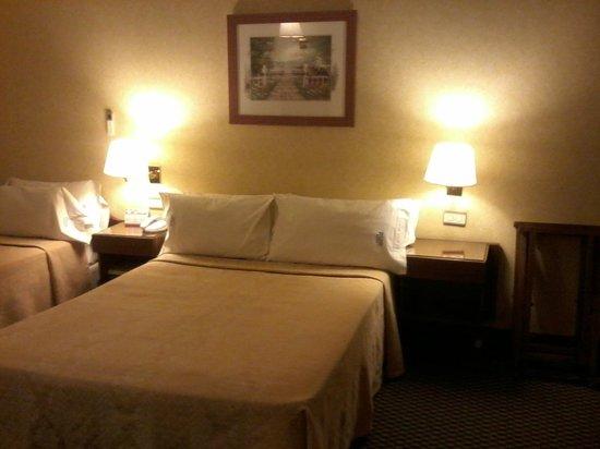 Castelar Hotel & Spa: la habitacion