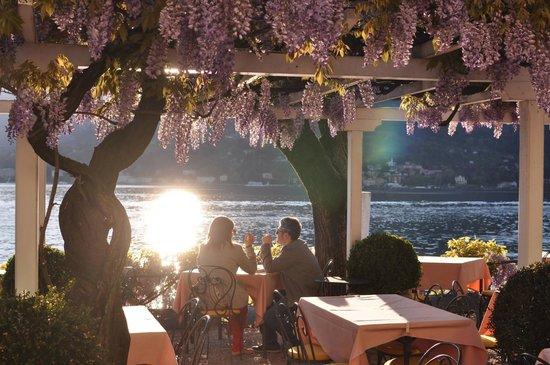 Florence Restaurant Drinks