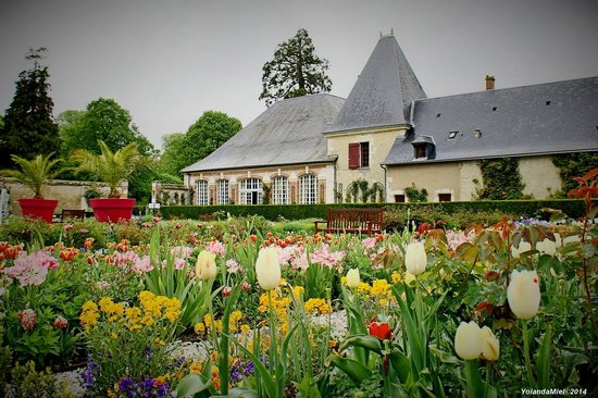 Château de Cheverny : Jardins du château de Chverny