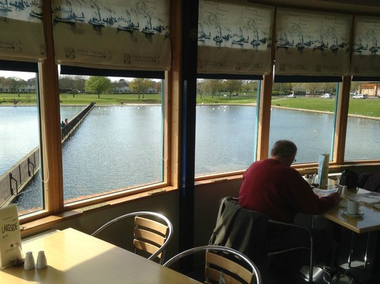 Lakeside Cafe and Bar: Swan Lake