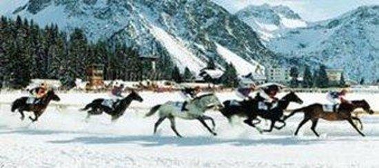 The Excelsior: Horseback riding