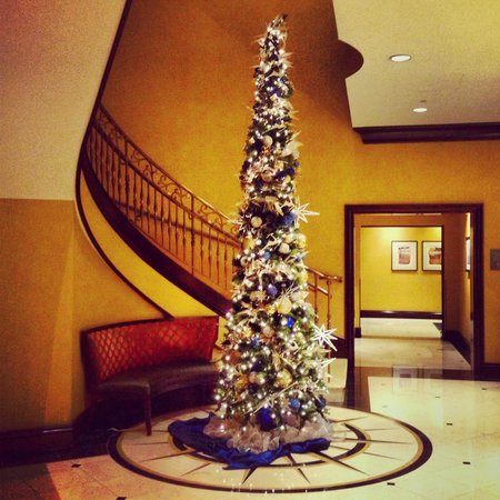 Kimpton Marlowe Hotel: Christmas Tree by the lovely spiral staircase - There is a compass underneath it <3