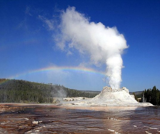 Yellowstone Day Tours