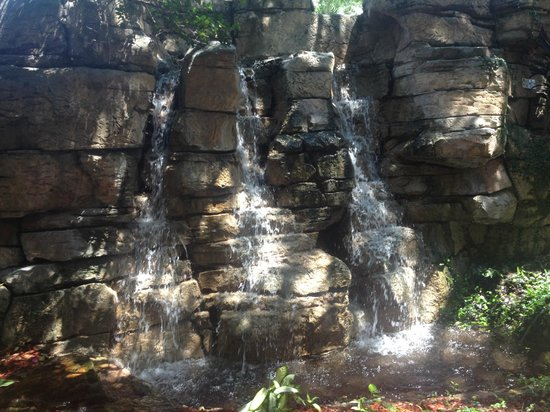 Radisson Resort Orlando-Celebration: waterfall