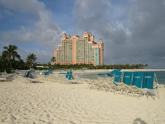 The Coral at Atlantis, Autograph Collection : Cove Beach