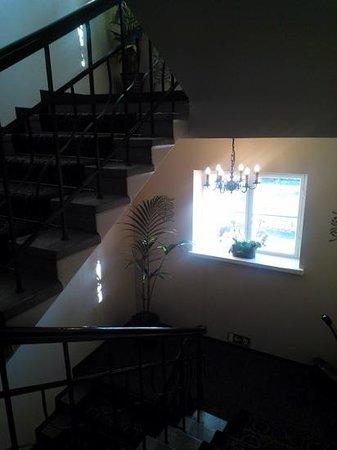 Hotel Yopuu: stairs