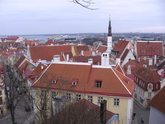 Tallinn Free Tour: From the amazing viewing platforms