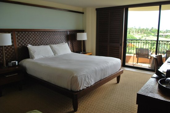 Royal Lahaina Resort : Camera...