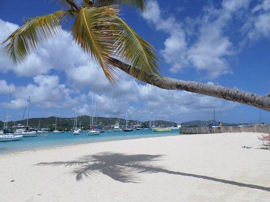 Hotel on the Cay: Hotel Beach