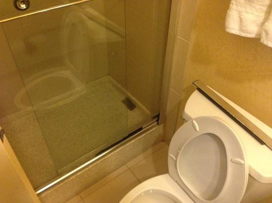 DoubleTree Cleveland East/Beachwood : Shower door glass hanging, note the silver track on top of the toilet.