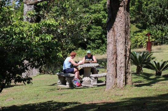 Hotel Fonda Vela: Gardens