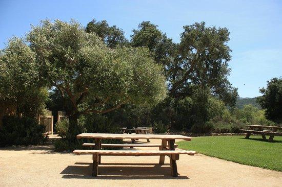 Sunstone Vineyards & Winery: Área Externa