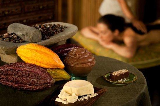 Fivelements Bali Retreat : Spa indulgence