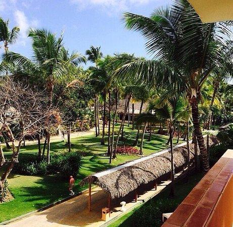 Catalonia Bavaro Beach, Casino & Golf Resort : Room view