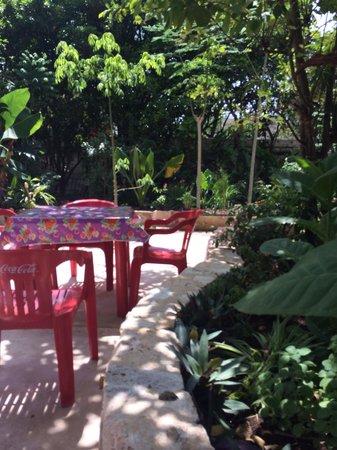 Yerbabuena del Sisal Restaurante : Peaceful garden